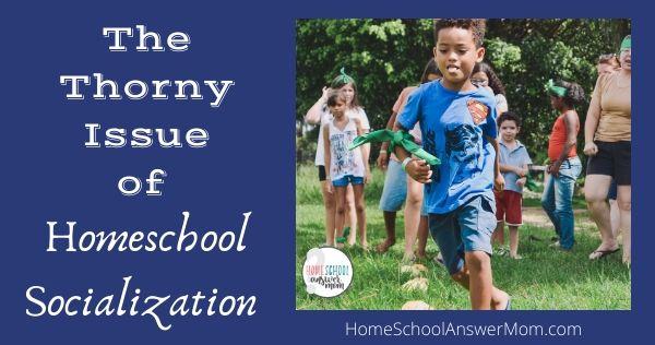 homeschool kids enjoying socialization